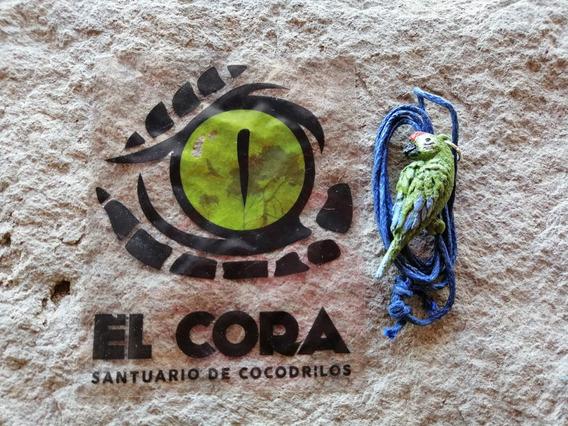 Collar Guacamaya Militar Santuario De Cocodrilos El Cora