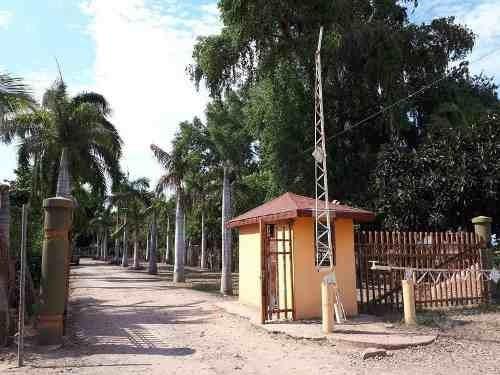 Se Vende Terreno Campestre Con Papalapa En Yebavito