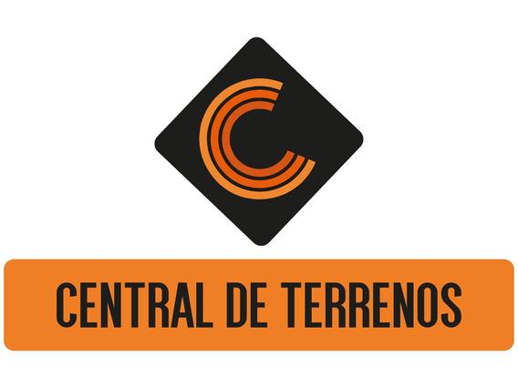 Terreno Em Alagoinhas - Te00033 - 4431547
