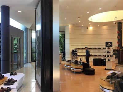 Mall Plaza Norte / / Showroom