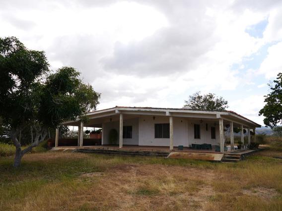 Granja Terreno En Venta En Barquisimeto #20-4116