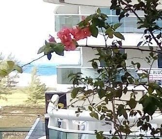 Imagem 1 de 15 de Apartamento Com 3 Dormitórios À Venda, 125 M² Por R$ 500.000,00 - Braga - Cabo Frio/rj - Ap0264