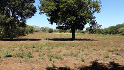 Vendo Terreno En Jinotepe