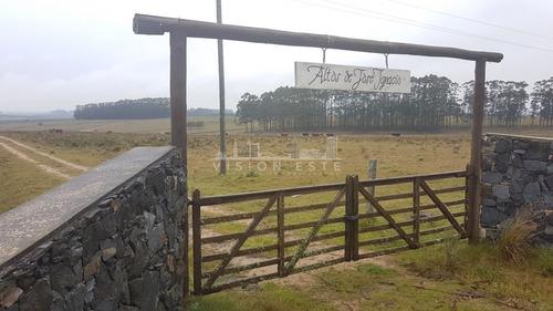 Chacra En Zona Rural De Jose Ignacio Camino Las Portuguesas - Ref: 371