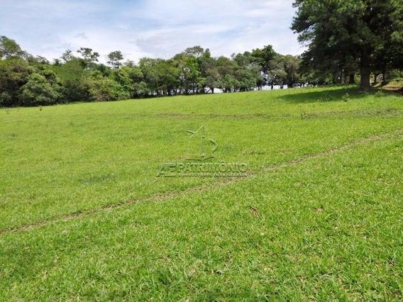 Area - Capoavinha - Ref: 53580 - V-53580