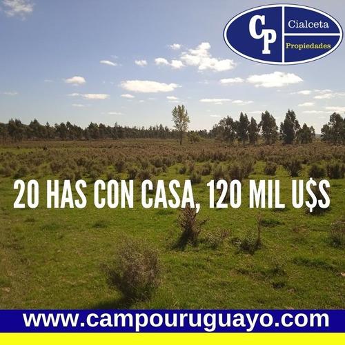 Campo De 20 Has A 88 Km De Montevideo