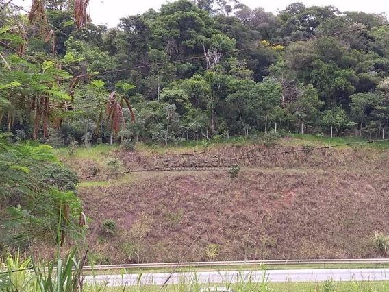 Area - Iporanga - Ref: 52860 - V-52860