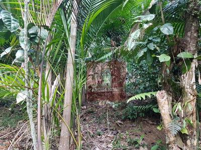Chácara Residencial À Venda, Bracuí (cunhambebe), Angra Dos Reis. - Ch0006