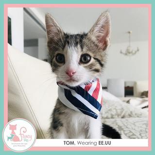 Pañoleta O Bandana Para Perros Y Gatos