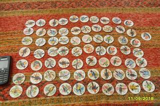 Lote De 70 Antigua Figuritas Pájaros, Aves Muy Buen Estado