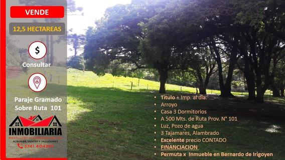 12,5 Hectáreas - Sobre Rn 101 - Bernardo De Irigoyen - Misio
