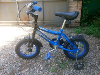 Bicicleta Tomaselli R12 Impecable