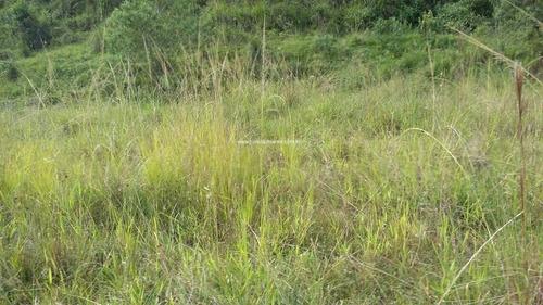 Terreno Com Toda Infraestrutura No Tijuco Preto. - Te00093 - 68756113