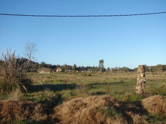 Terreno Venta Zona Barrios Privados: Las Higueritas A 400m Cno.horneros