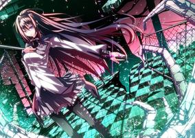 Poster Houmura Akemi Anime Tamanho A3 P5034