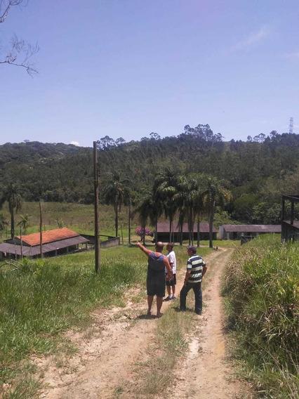 Belo Sitio Mogi Bertioga Vila Moraes
