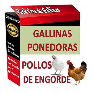 Aprende Todo Sobre La Cria De Pollos Y Gallinas Ponedoras