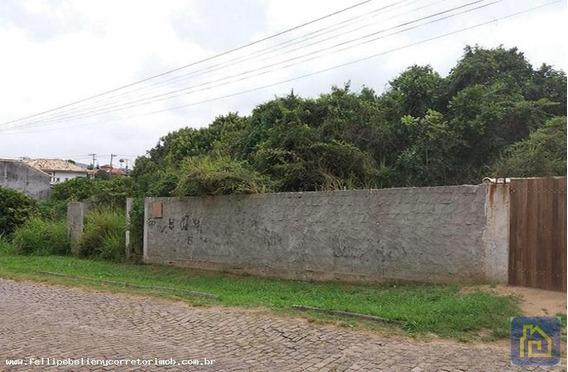 Terreno Para Venda Em Armação Dos Búzios, Praia Brava - Terr008_1-993573