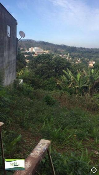 Terreno Residencial À Venda, Companhia Fazenda Belém, Franco Da Rocha. - Te0031