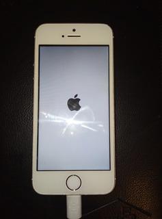 Appel iPhone 5s