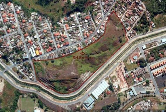 Grande Terreno Com 76.000m² Em Betim - 14786