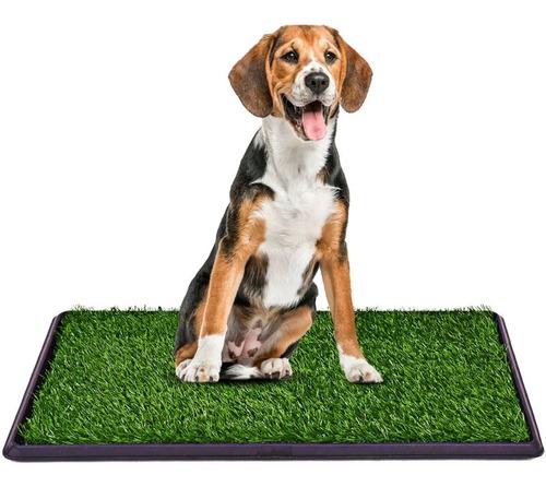 Baño Ecologico Sanitario Xxl Perros Mascotas 60730