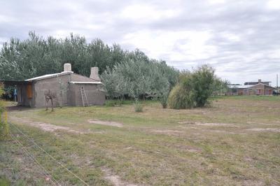 Dos Casas, Una De Caseros Y Casa Principal Con Cuatro Baños