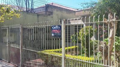 Terreno Residencial À Venda, Parque Da Mooca, São Paulo - Te1649. - Te1649