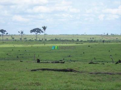 Mega Fazenda 97.000 Ha - Nova Bandeirantes (mt) - Codigo: Fa0214 - Fa0214