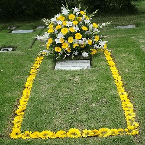 Dos Lotes Cementerio Inmaculada Bogotá Parque 3 Zona De Suba
