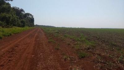 Fazenda A Venda Em Rio Brilhante - Ms (soja) - 732