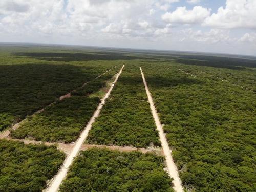 Imagen 1 de 6 de Terreno En Venta En Chicxulub Pueblo 214253jl