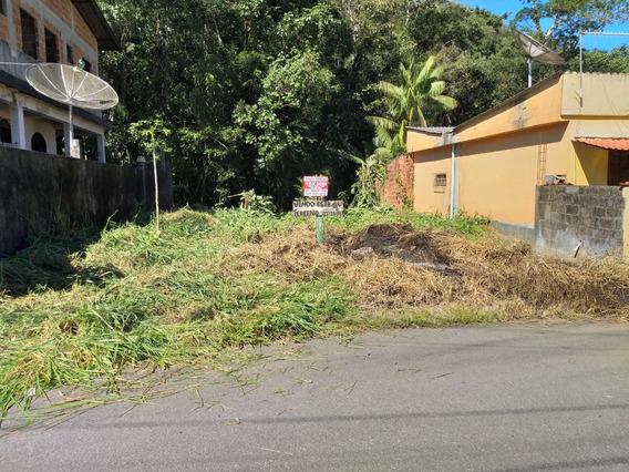 Terreno 310 M² Em São Gonçalo, Distrito De Parati