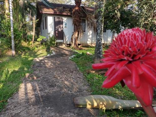 Imagem 1 de 15 de Charmosa Chácara Localizada  Na Vila Das Palmeiras - Preço Imperdível - Ch0139