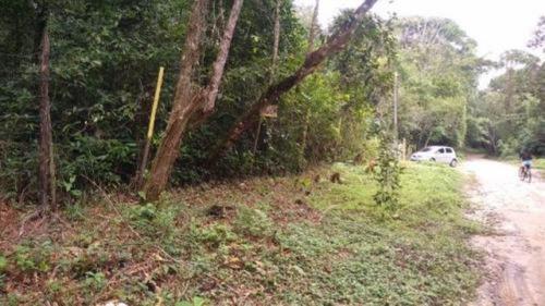 Terreno De Chácara Com 1500 M², Em Itanhaém/sp 7016.-pc
