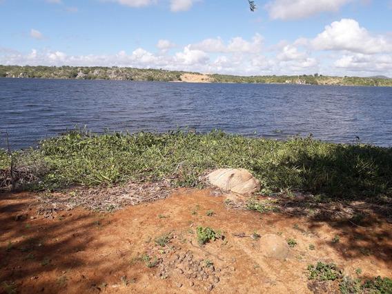 Excelente Área Para Criações E Plantio/jatobá-pernambuco