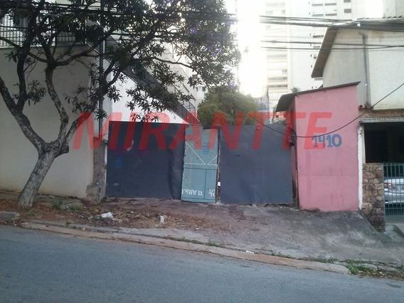 Terreno Em Perdizes - São Paulo, Sp - 305507