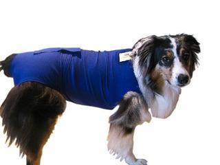 Surgi Snuggly E Collar Alternativa Creado Por Un Veterinario