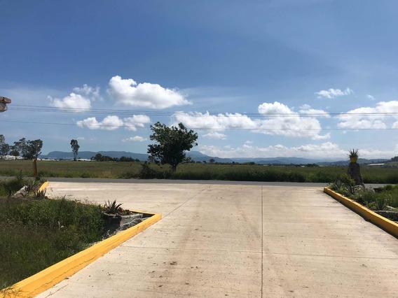 Ixtapan De La Sal Terrenos Campestres 500 Mts X $400,000