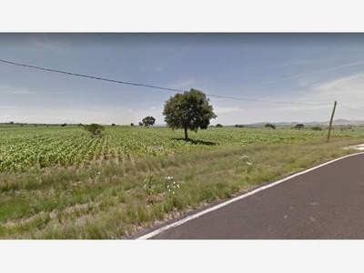 Terreno Comercial En Venta Carretera Cuapiaxtla- Cuacnopalan