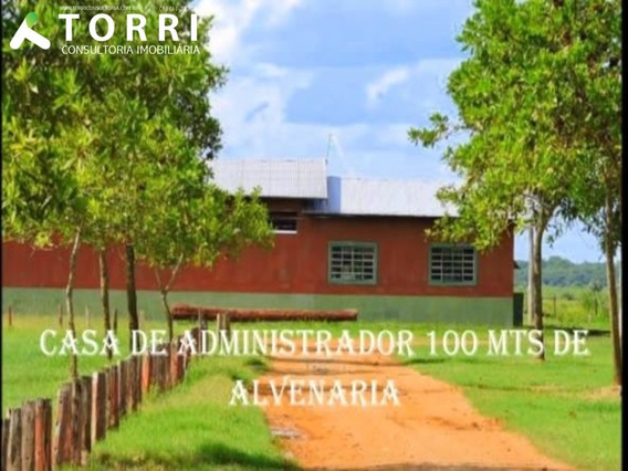 Fazenda - Fa00013 - 34437114