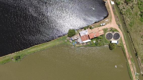 Fazenda À Venda, 250000 M² Por R$ 1.850.000,00 - Ceará-mirim - Ceará-mirim/rn - Fa0015