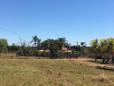 Fazenda A Venda Em Crixas Do Tocantins -to(dupla Aptidão) - 811