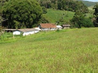 Fazenda Rural À Venda, Sá Fortes, Barbacena. - Fa0146