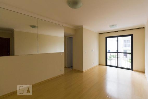 Apartamento Para Aluguel - Vila Mascote, 2 Quartos, 60 - 893096666