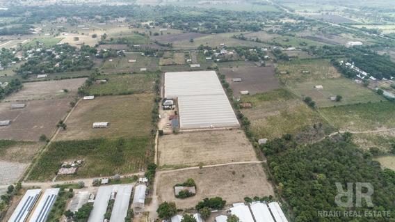 Proyecto Agrícola En Santiago