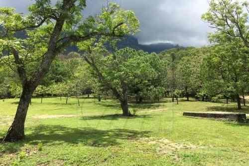 Terrenos En Venta En Loma Alta, Linares