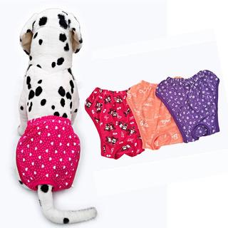 Calzones De Algodón Para Perro (pack X 3 Unidades)