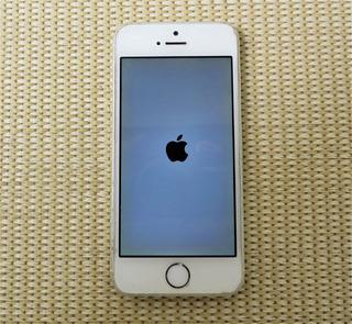 Apple iPhone 5s 32gb Unico Dono Desbloqueado Com Caixa+ Fone