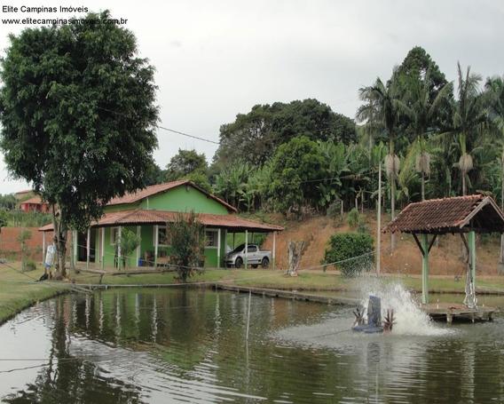 Chacara - Ch00064 - 33817310